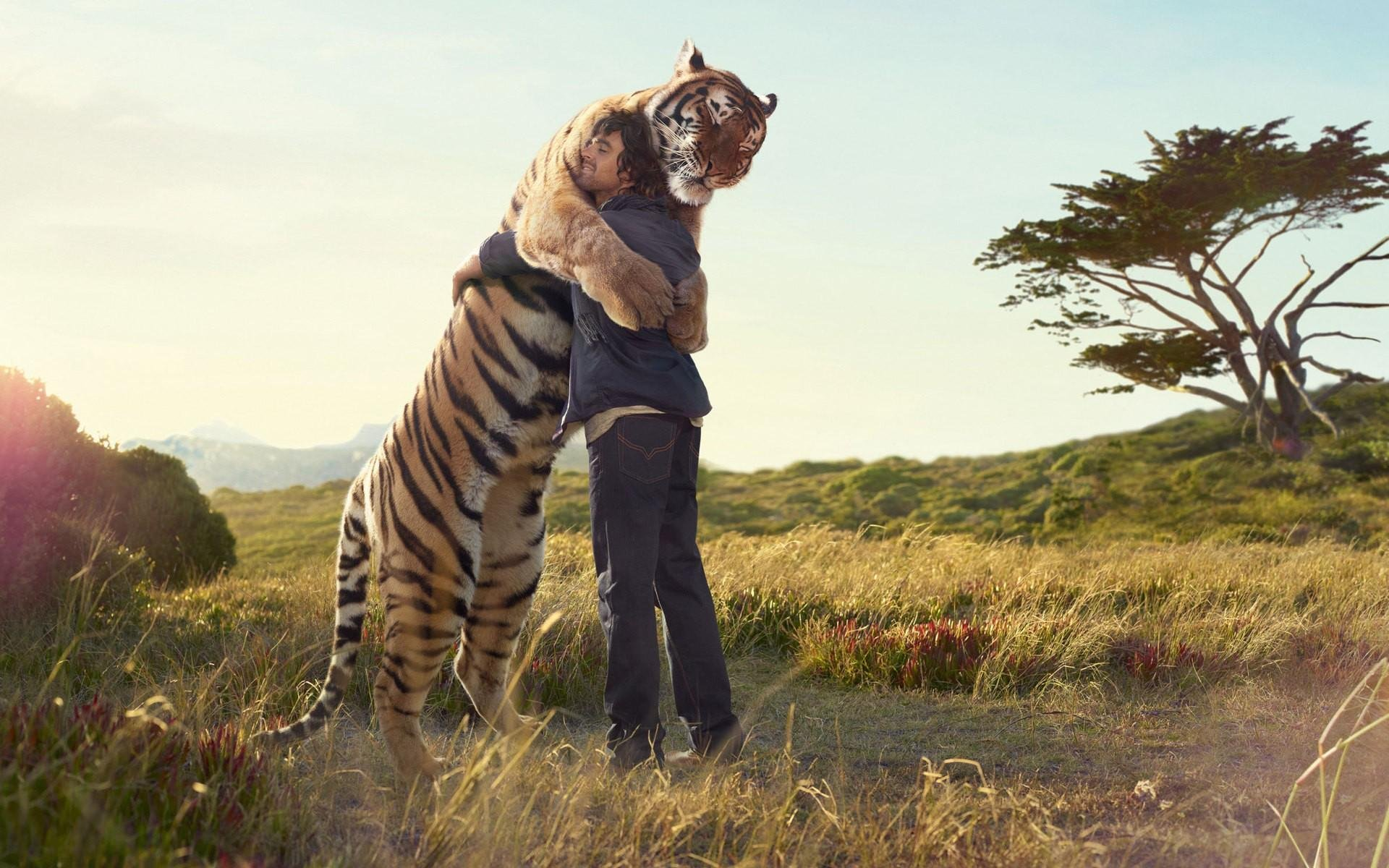 Animal Attraction Mean for Your Spirit